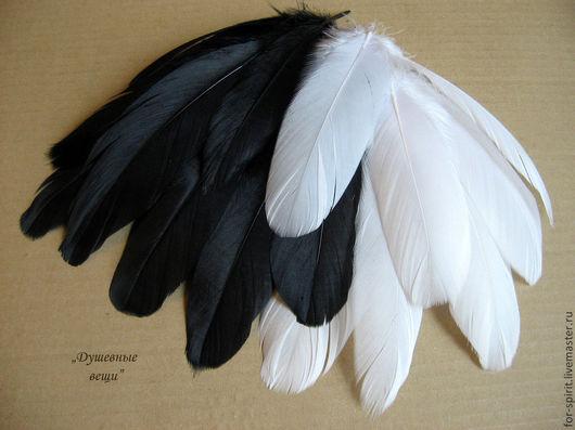 Другие виды рукоделия ручной работы. Ярмарка Мастеров - ручная работа. Купить Перья гуся (14-20 см). Handmade.