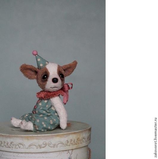 Мишки Тедди ручной работы. Ярмарка Мастеров - ручная работа. Купить Чихуа Хьюго. Handmade. Белый, чихуа, древесные опилки