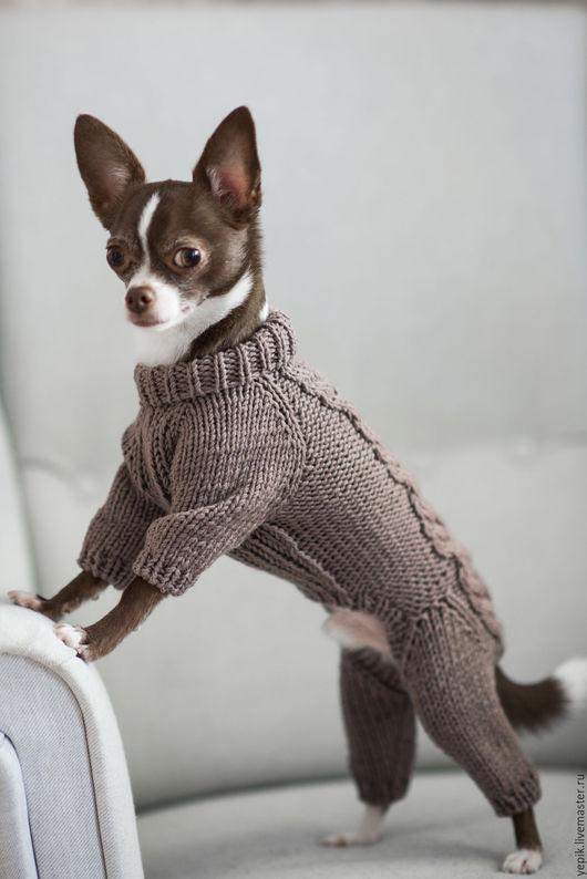 Одежда для собак, ручной работы. Ярмарка Мастеров - ручная работа. Купить комбинезон для собаки. Handmade. Коричневый, вязаный свитер