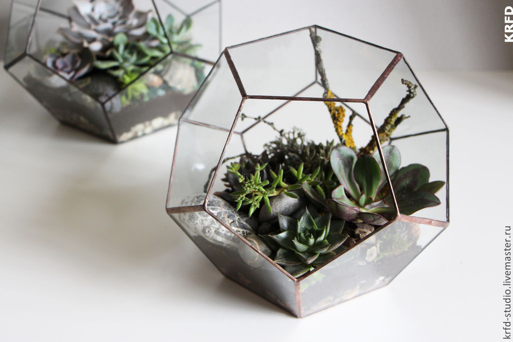 Террариум геометрический своими руками