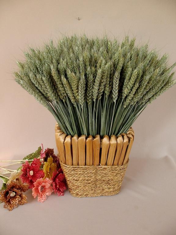 Букет из колосьев пшеницы своими руками 749
