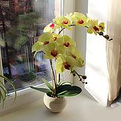 Цветы и флористика ручной работы. Ярмарка Мастеров - ручная работа Орхидея желто-зеленая в горшке. Handmade.