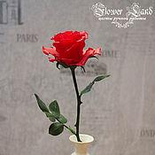 Цветы и флористика ручной работы. Ярмарка Мастеров - ручная работа Красная роза из холодного фарфора. Handmade.