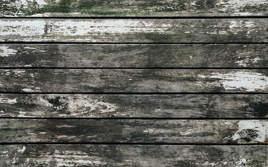 Фитодизайн помещений ручной работы. Ярмарка Мастеров - ручная работа. Купить Фотофон винил. Handmade. Комбинированный, фотофон для мастеров, фотофон