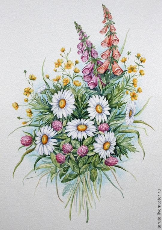 рисунок цветов ромашка и одуванчик