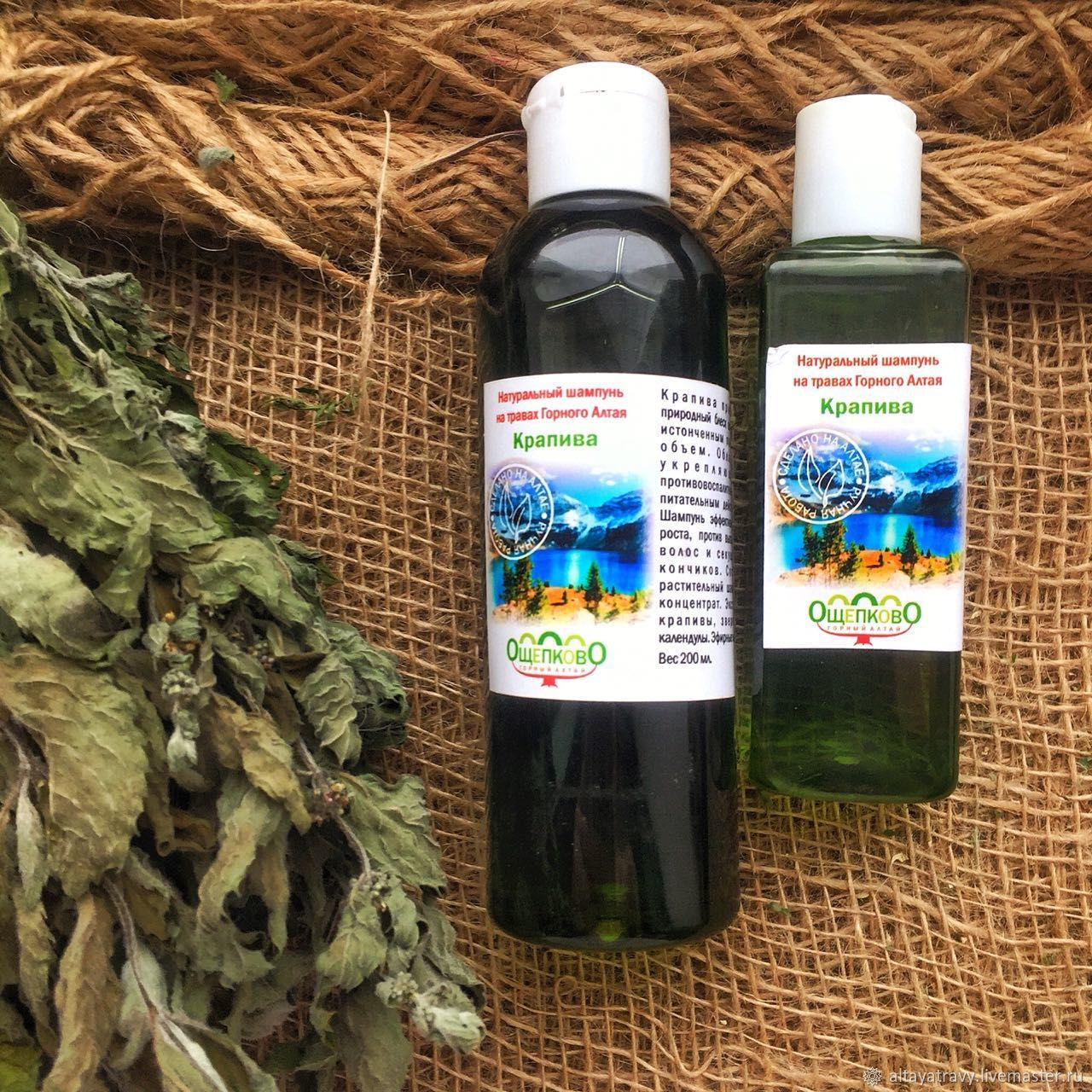 Shampoo Nettle on herbs of the Altai Mountains, Shampoos, Kemerovo,  Фото №1