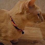 Зоотовары handmade. Livemaster - original item Collar beaded