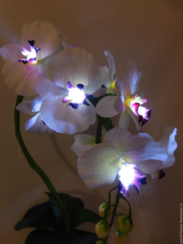 Flower Lamp U0027Phalaenopsis Orchidu0027 Vase. Elena Krasilnikova.