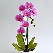 Цветы и флористика ручной работы. Ярмарка Мастеров - ручная работа Орхидея из полимерной глины.Фаленопсис розовый. Handmade.