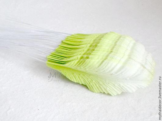 Лепестки лилии малые бело-зеленые My Thai материалы для флористики из Таиланда
