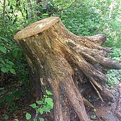 Материалы ручной работы. Ярмарка Мастеров - ручная работа Большие дубовые пни  с корнями. Handmade.