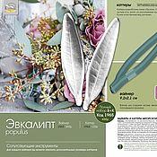 Материалы для творчества handmade. Livemaster - original item EUCALYPTUS TOPOLOVENI, viners and cutters. Handmade.