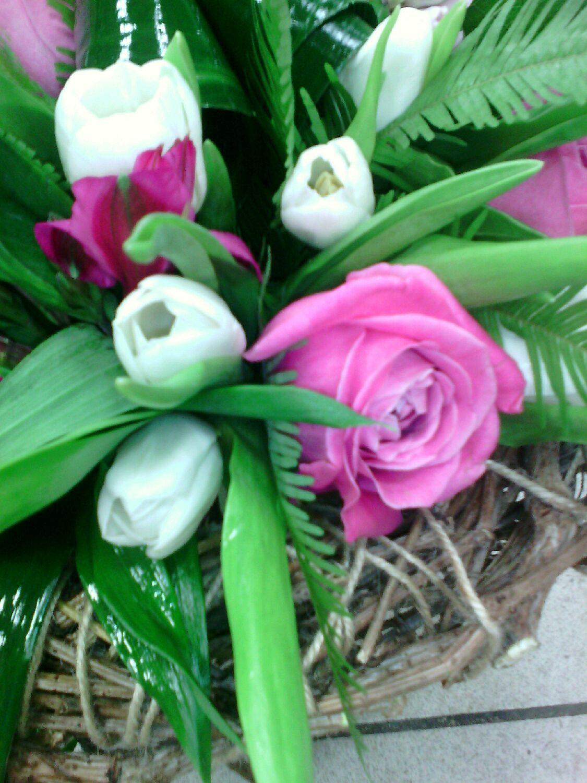 дикие синие цветы названия и фото