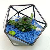 Флорариумы ручной работы. Ярмарка Мастеров - ручная работа Флорариум с живыми растениями. Handmade.
