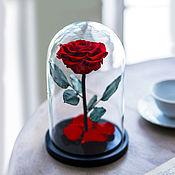 Цветы ручной работы. Ярмарка Мастеров - ручная работа Роза в колбе Premium красная. Handmade.