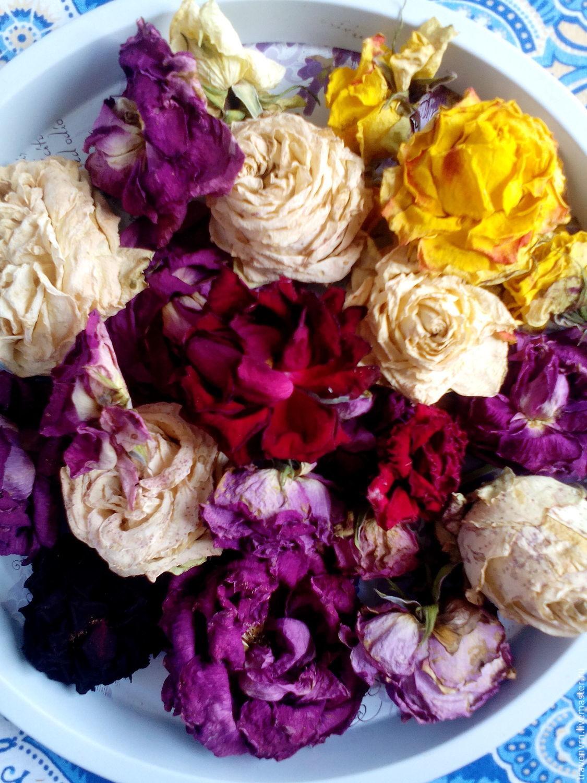 Розы сухоцветы купить