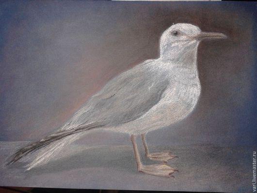 Животные ручной работы. Ярмарка Мастеров - ручная работа. Купить Серебристая чайка. Handmade. Серый, картина, бумага для пастели