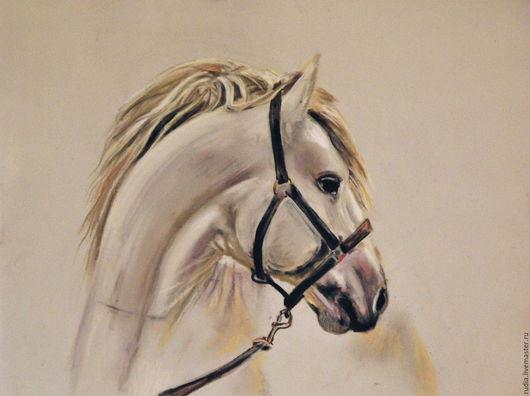 Пастельная картина Белая лошадь, портрет, подарок любителю лошадей. Профиль белого коня, символа свободы, ветер в гриве, лошадиная голова. Работа выполнена в черно-белых тонах на пастельном картоне.