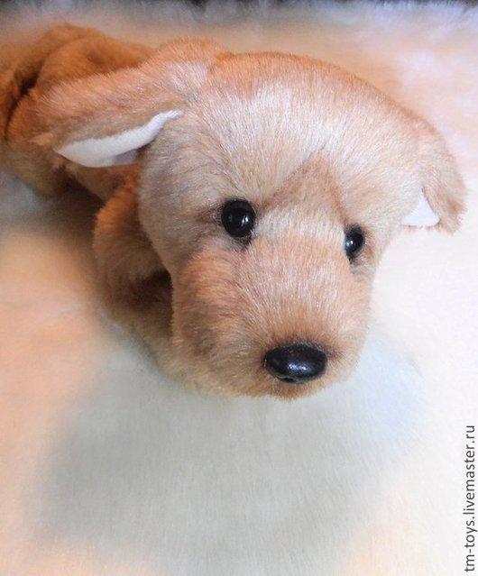 Мишки Тедди ручной работы. Ярмарка Мастеров - ручная работа. Купить Я грозная сторожевая собака... Handmade. Бежевый, друг