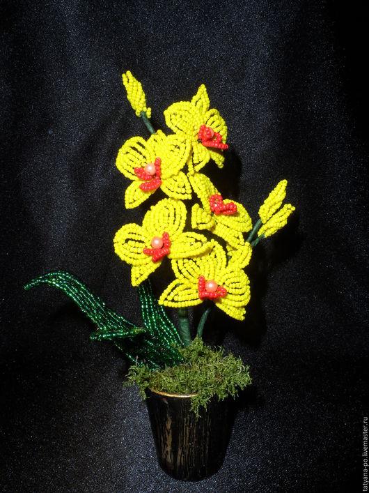 Цветы ручной работы. Ярмарка Мастеров - ручная работа. Купить Маленькая орхидея из бисера. Handmade. Разноцветный, цветы из бисера, бисер