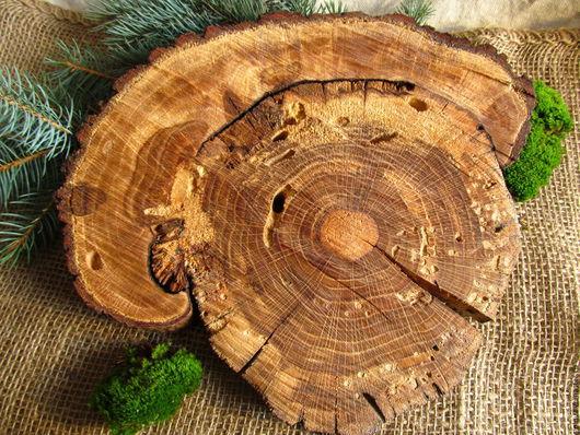 Другие виды рукоделия ручной работы. Ярмарка Мастеров - ручная работа. Купить Спил Старого Дуба. Handmade. Дуб, дерево