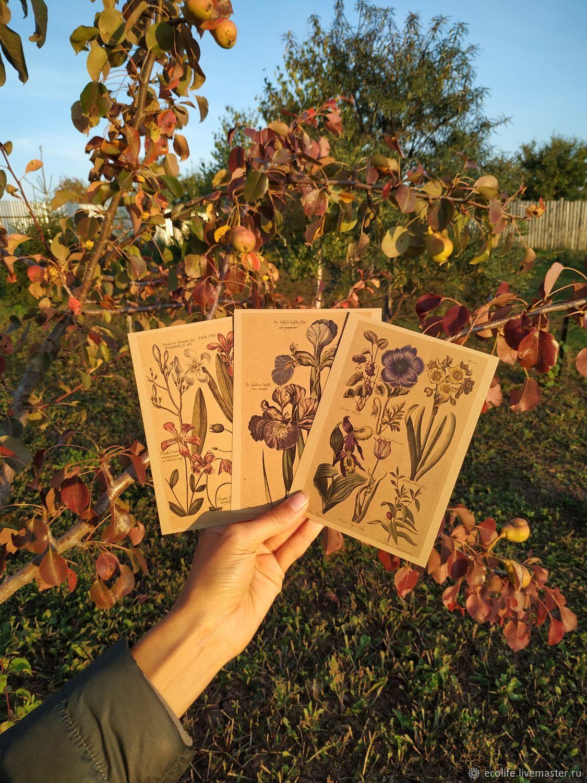 Открытки крафт: ботанический винтаж, Открытки, Ижевск, Фото №1