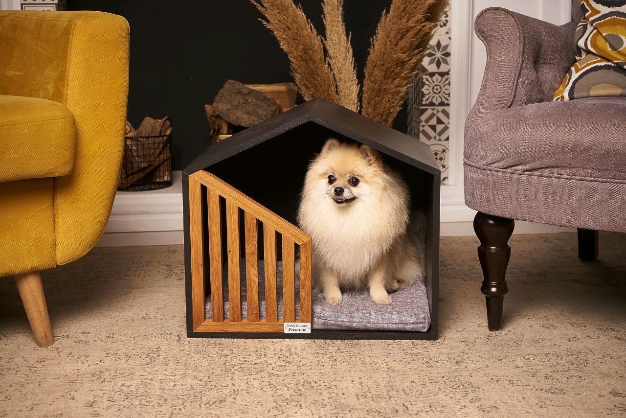 Little Black Future Pet House, Pet House, Nizhny Novgorod,  Фото №1