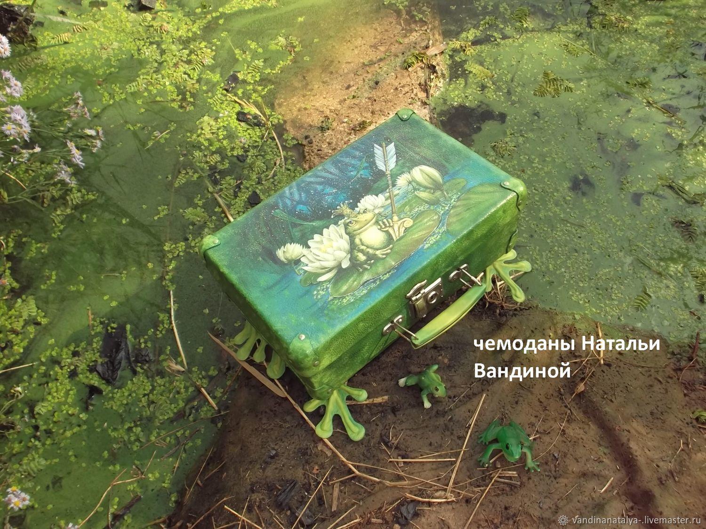 Чемоданчик  для Лягушки- Путешественницы