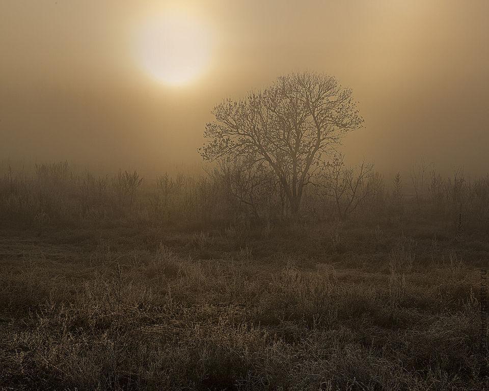 Фотократина Утро туманное, утро седое, Фотокартины, Москва,  Фото №1