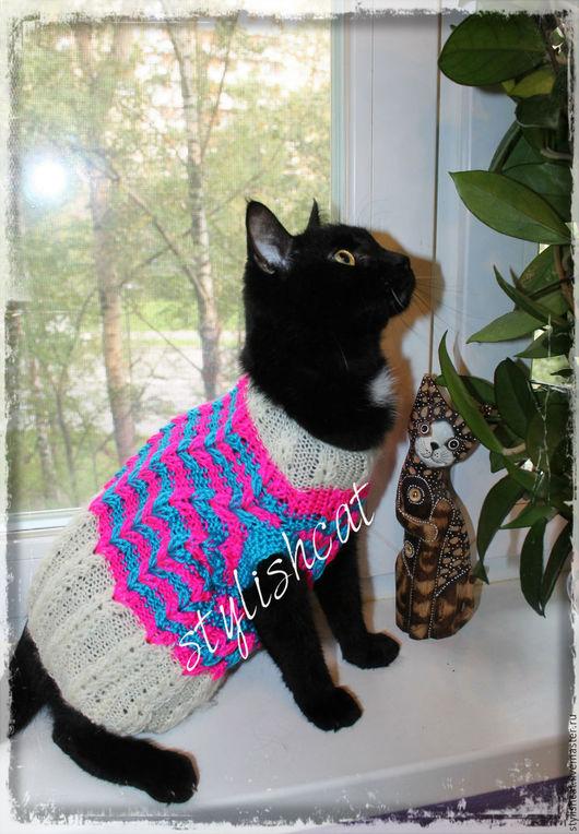Одежда для кошек, ручной работы. Ярмарка Мастеров - ручная работа. Купить Свитер для кошек/котов. Handmade. Комбинированный, вязаный свитер для кота
