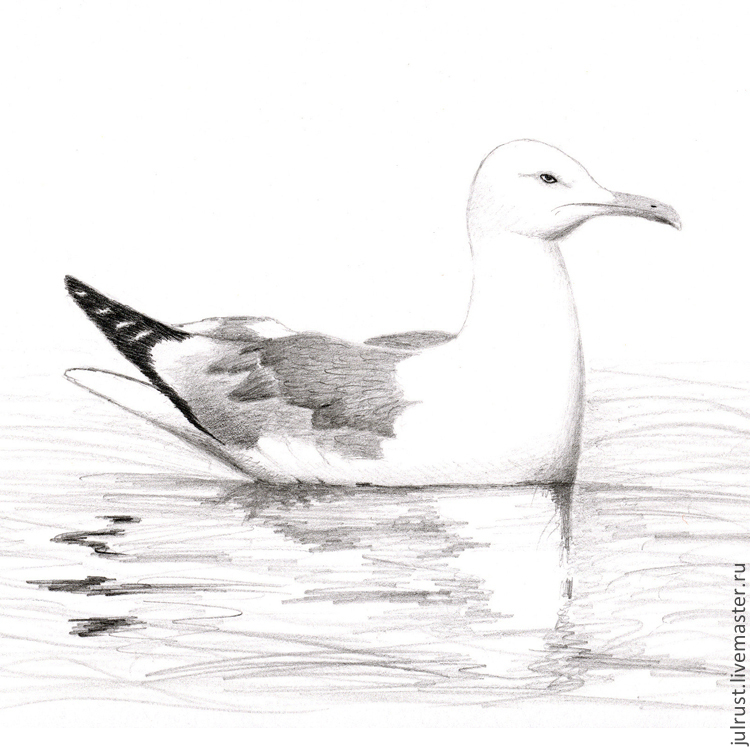 ... белый серый черный птица графика ( 83: https://www.livemaster.ru/item/9699803-kartiny-panno-kartina-chajka...