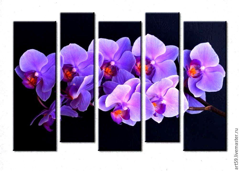 Orchids in a lavender color (canvas,paint), Pictures, St. Petersburg,  Фото №1