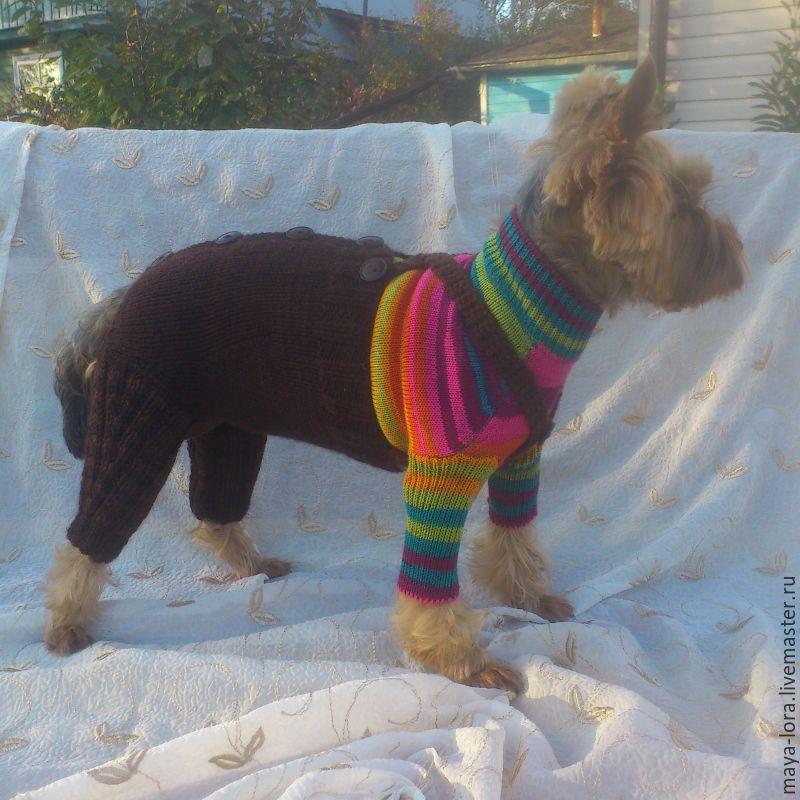 одежда для собак штанишки для собачки купить в интернет магазине