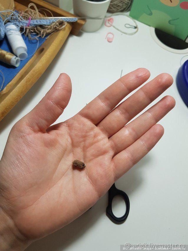 Морская свинка амигуруми