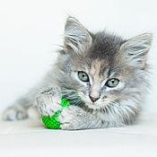 Для домашних животных, ручной работы. Ярмарка Мастеров - ручная работа Игрушка для кошки - обвязанный шарик. Handmade.