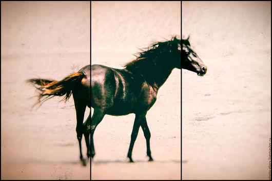 """Фотокартины ручной работы. Ярмарка Мастеров - ручная работа. Купить Фотокртина """"Настоящая вечность – Звёзды в гривах лошади"""". Handmade."""