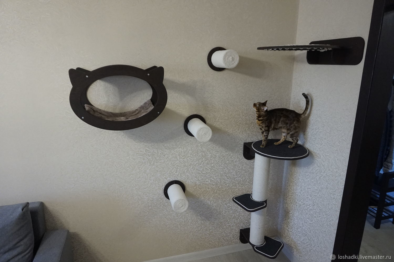 Wall-mounted complex for cats ' Berlin', Scratching Post, Pleasant,  Фото №1