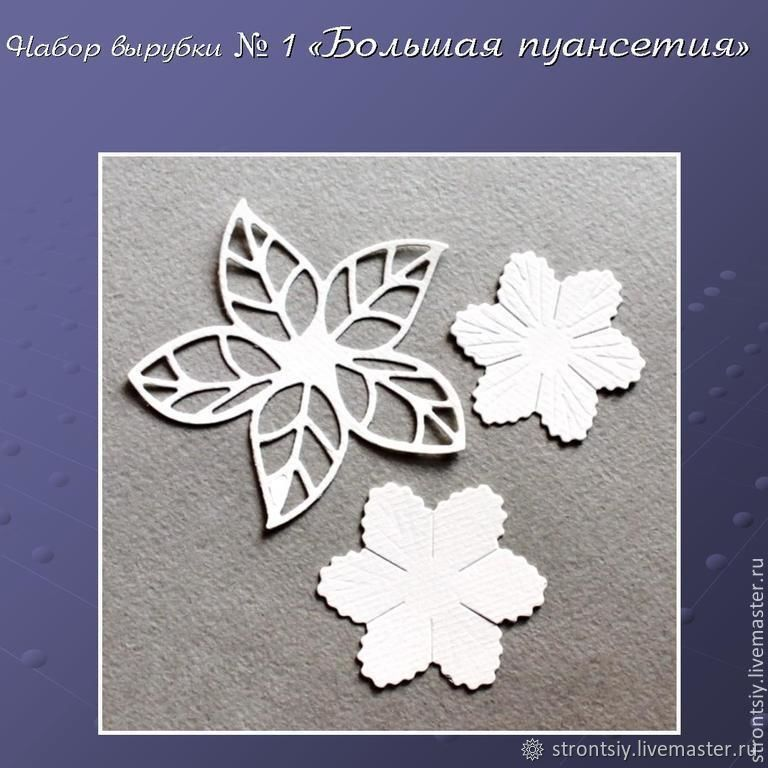 Cutting set # 1 ' poinsettia Sepals', Scrapbooking cuttings, Rostov-on-Don,  Фото №1