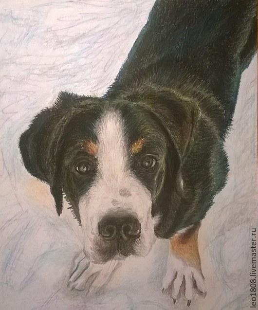 Животные ручной работы. Ярмарка Мастеров - ручная работа. Купить Портрет собаки. Handmade. Собака, пес, песик, портрет на заказ