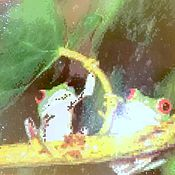 """Картины и панно ручной работы. Ярмарка Мастеров - ручная работа картина""""Лягушки"""". Handmade."""