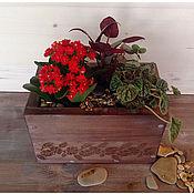 """Цветы и флористика ручной работы. Ярмарка Мастеров - ручная работа Коробка/ящичек  с цветами """"Шоколадная"""". Handmade."""