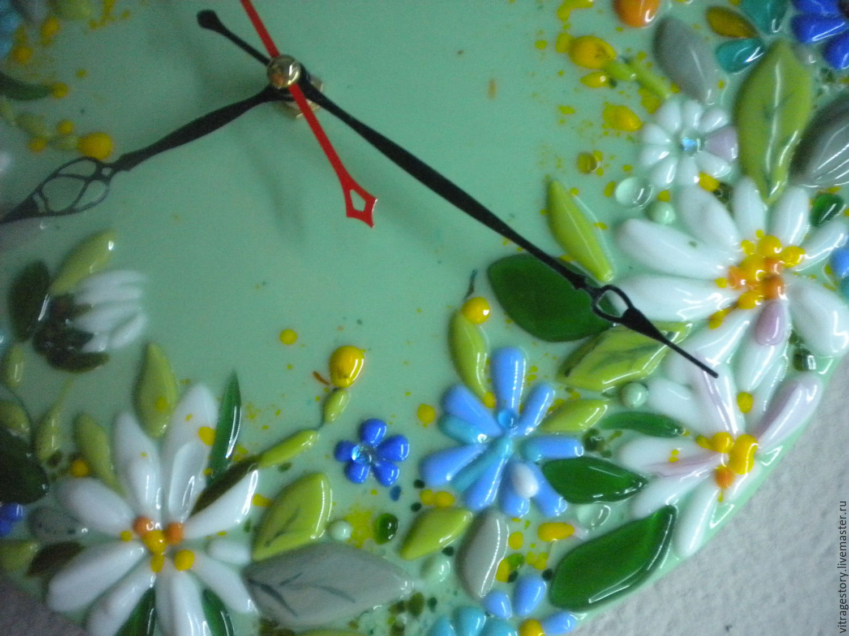 Цветы часики луговые фото