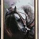 """Животные ручной работы. Ярмарка Мастеров - ручная работа. Купить Алмазная вышивка """"Непокоренный"""". Handmade. Подарок, картина в подарок, лошадь"""