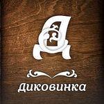 Диковинка - Ярмарка Мастеров - ручная работа, handmade
