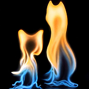 Картины и панно ручной работы. Ярмарка Мастеров - ручная работа Фотокартина - Кошечки из огня. Handmade.