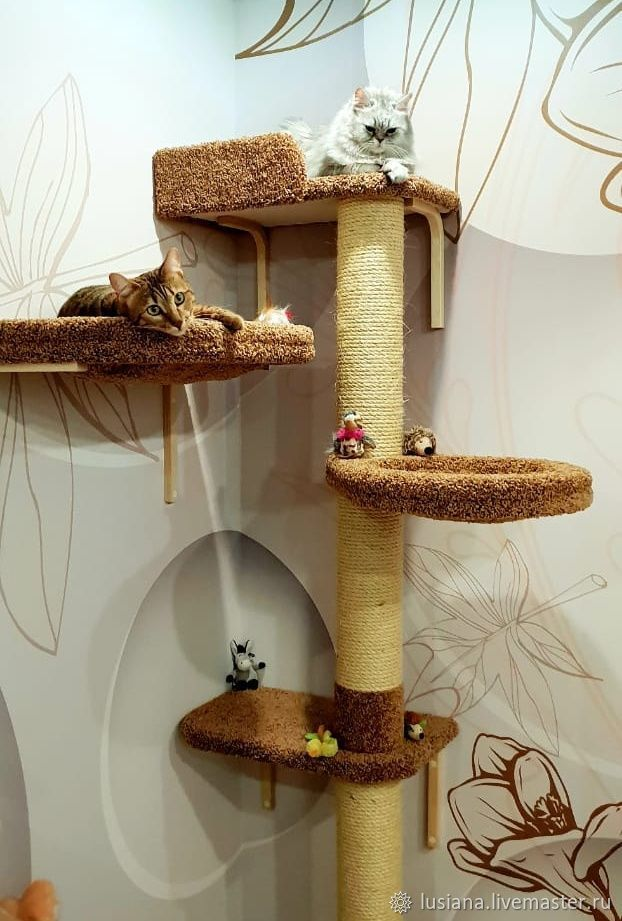 wall house for cats buy available in size shop online on rh livemaster com