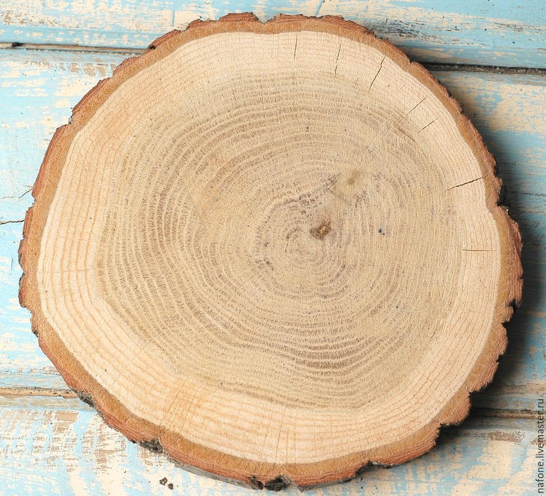 Как сделать спил дерева большого диаметра
