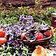 Чай от сердечной тоски, Кулинарные сувениры, Омск,  Фото №1