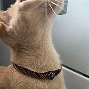 Зоотовары handmade. Livemaster - original item Collars: Collar Dark amber. Handmade.