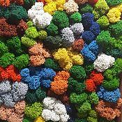 Природные материалы ручной работы. Ярмарка Мастеров - ручная работа Стабилизированный мох от производителя. Handmade.